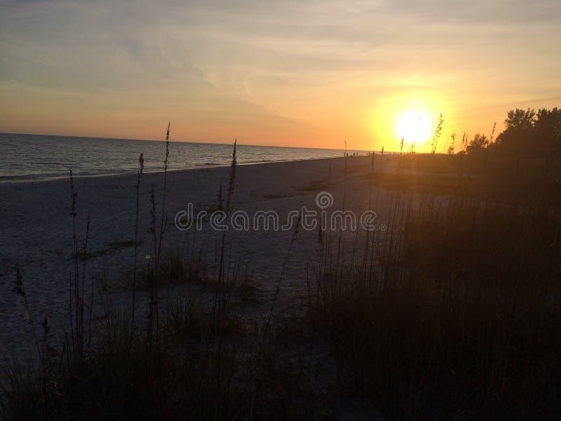 Sonnenuntergang auf Sanibel stockfotografie