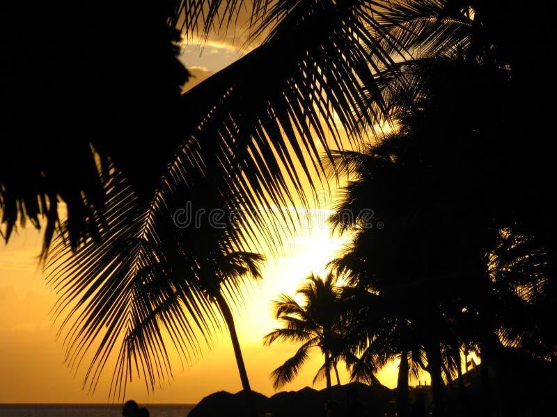 Sonnenuntergang in Bayahibe lizenzfreie stockbilder