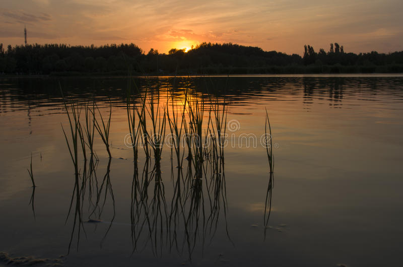 Sonnenuntergang bei olympischen Forest Park Beijing China stockbilder