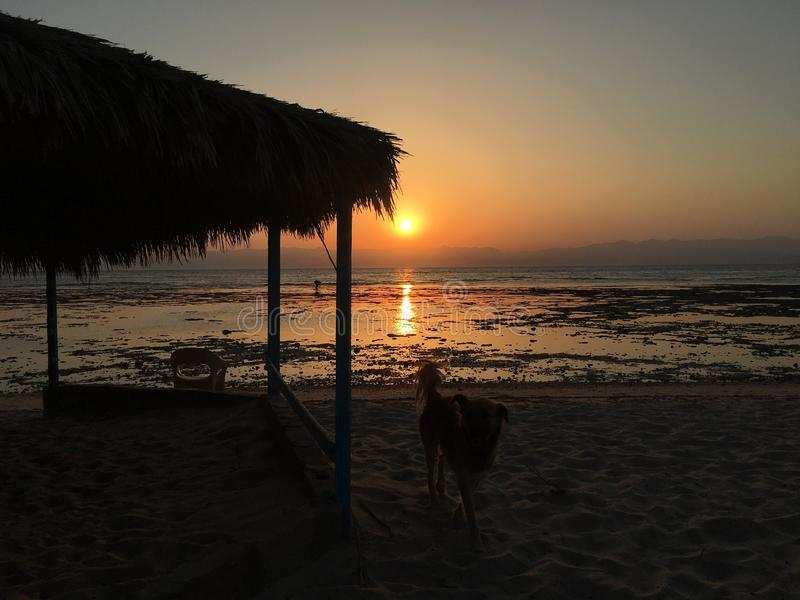 Sonnenuntergang bei Ras Shitan stockbilder