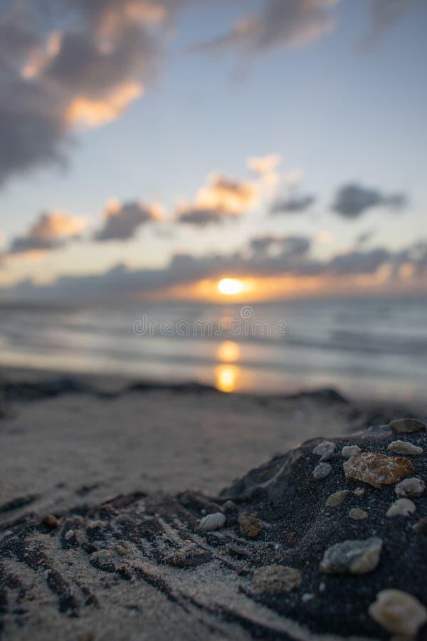 Sonnenuntergang beim Brouwersdam, die Niederlande lizenzfreie stockbilder