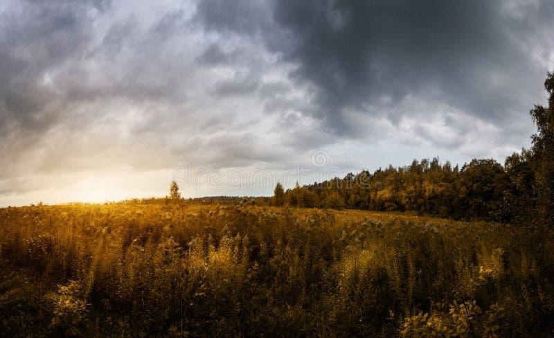 Sonnenuntergang belichtet das Herbstfeld und -wald auf einem stürmischen Donnerhimmel lizenzfreies stockbild