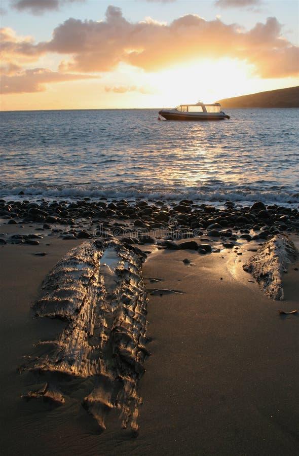Sonnenuntergang-Boot und Strand stockfotografie