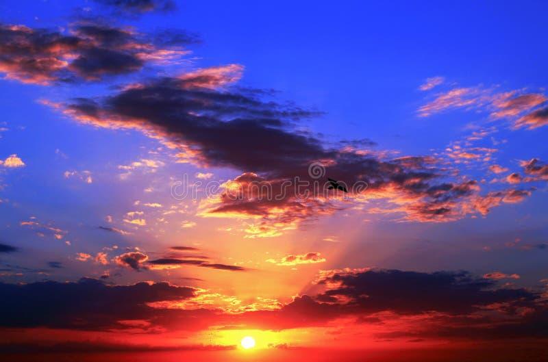 Sonnenuntergang an Clearwater-Strand stockfotografie
