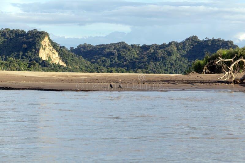 Sonnenuntergang an den Beni-Flussklippen, Abenteuer in den Dschungeln Nationalparks Madidi, der Amazonas-Becken in Bolivien, Süda stockbilder