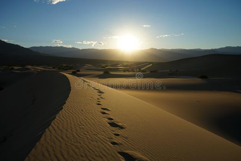 Sonnenuntergang in den SüßhülsenbaumSanddünen Kalifornien lizenzfreies stockfoto