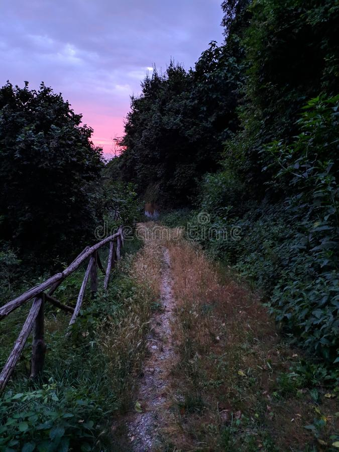Sonnenuntergang in der Natur stockfotos