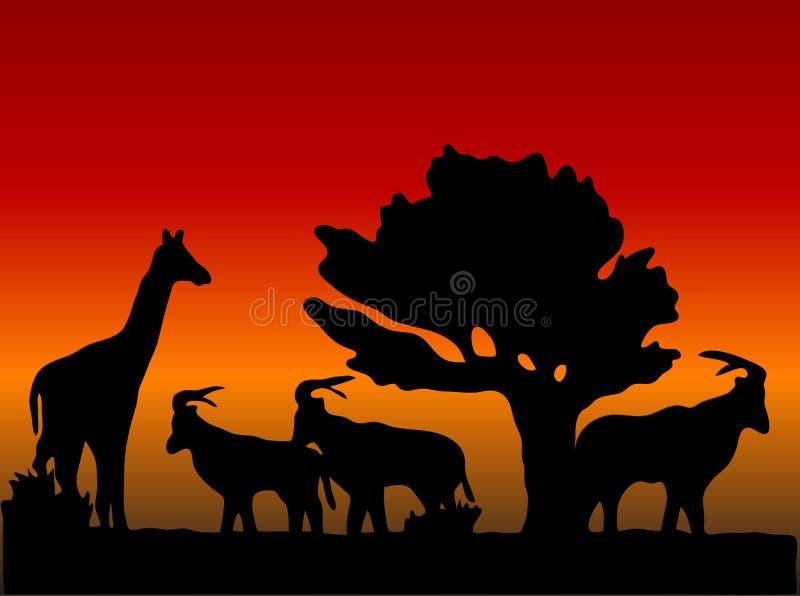 Sonnenuntergang in der Safari vektor abbildung