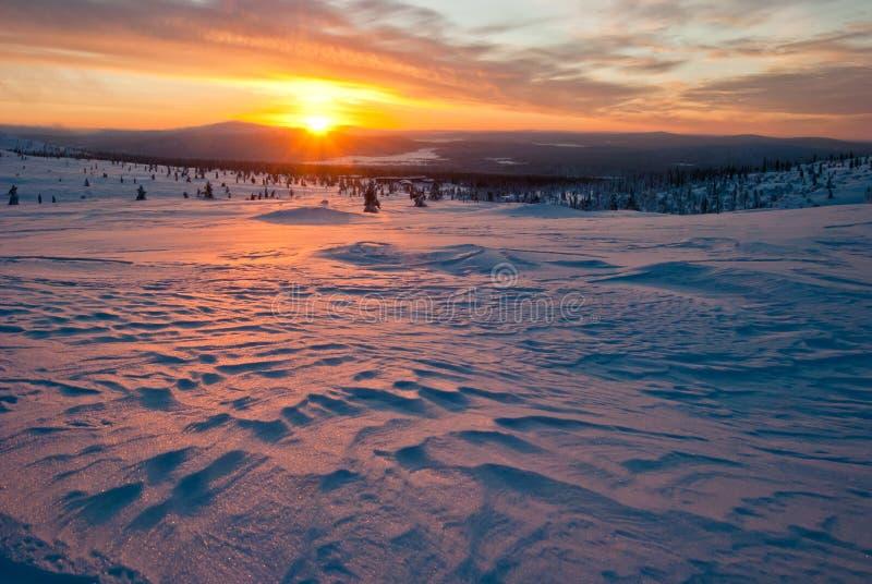 Sonnenuntergang in der Tundra lizenzfreies stockbild