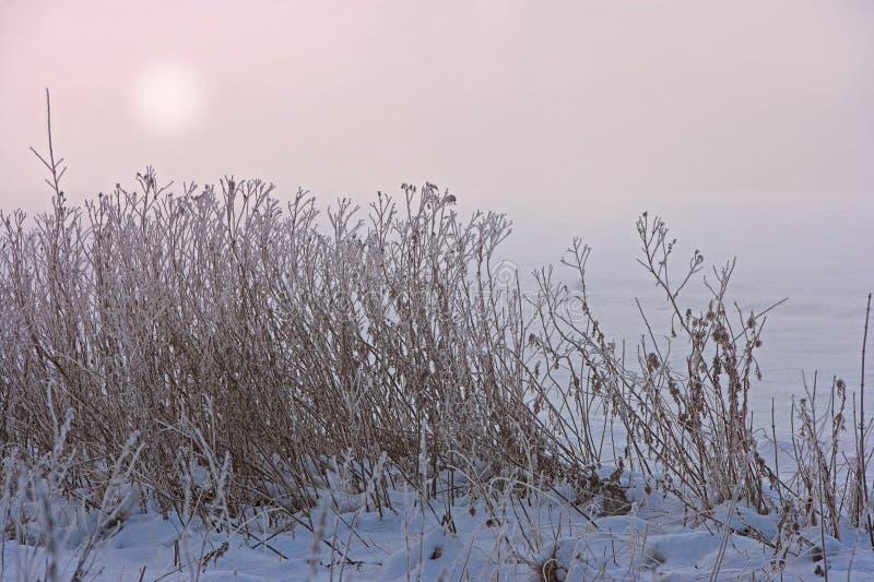 Sonnenuntergang in der winterlichen Landschaft stockbild