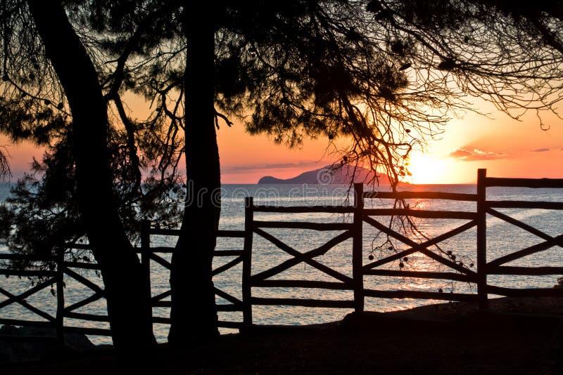 Sonnenuntergang durch Bretterzaun unter Kiefern in Sithonia lizenzfreie stockbilder