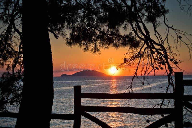 Sonnenuntergang durch Bretterzaun unter Kiefern in Sithonia stockfoto