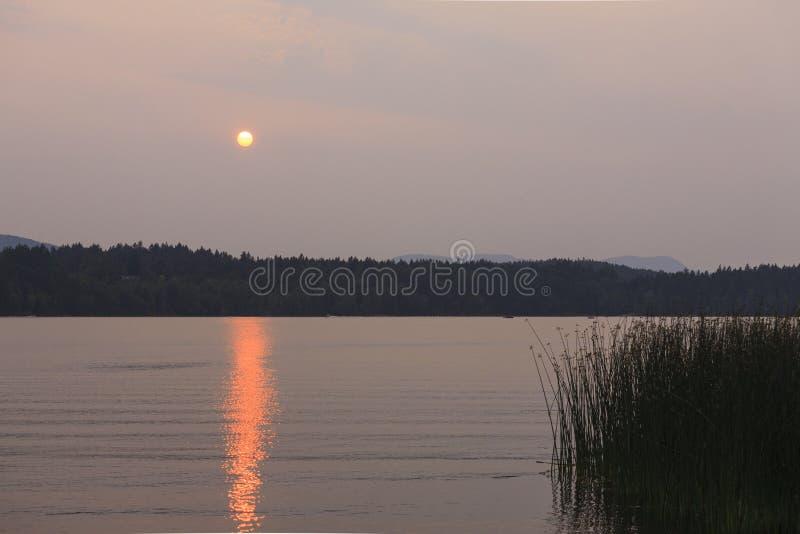 Sonnenuntergang durch Waldbrand stockbild