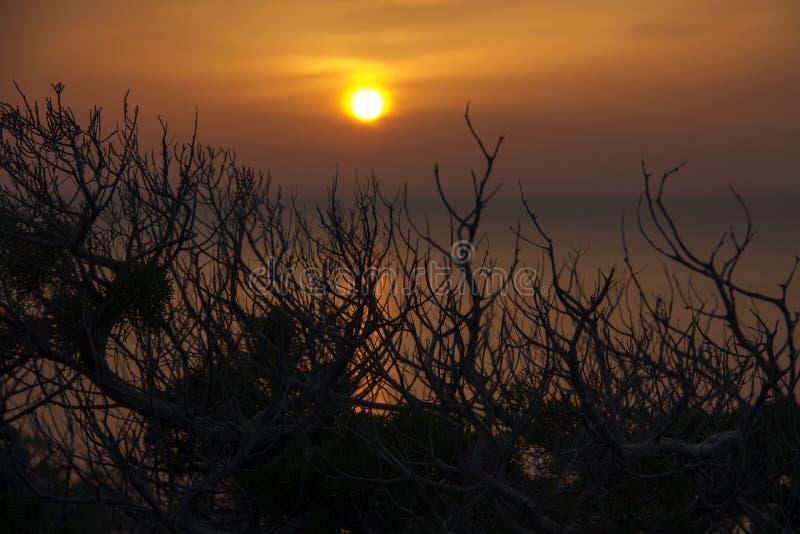 Sonnenuntergang in einem Nebenfluss stockfotos