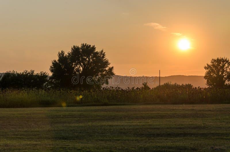 Sonnenuntergang an einem Sommerabend auf dem Gebiet stockfoto