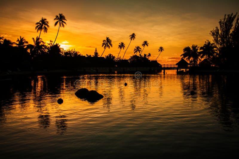 Sonnenuntergang in einem tropischen Paradies mit Palmen stockbild