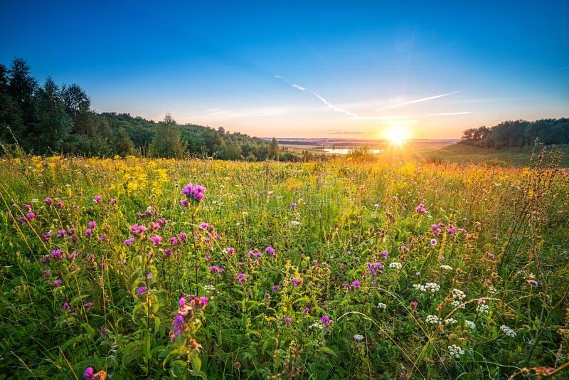 Sonnenuntergang in einer Landschaft stockfotos