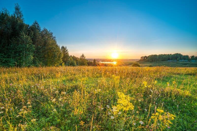 Sonnenuntergang in einer Landschaft lizenzfreie stockbilder