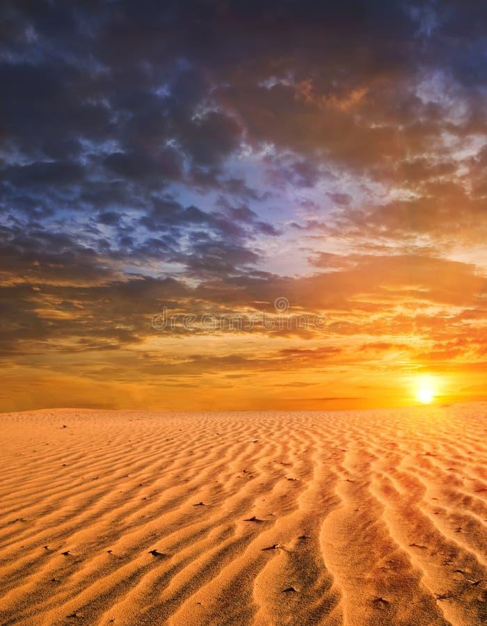 Sonnenuntergang in einer Wüste lizenzfreie stockfotos