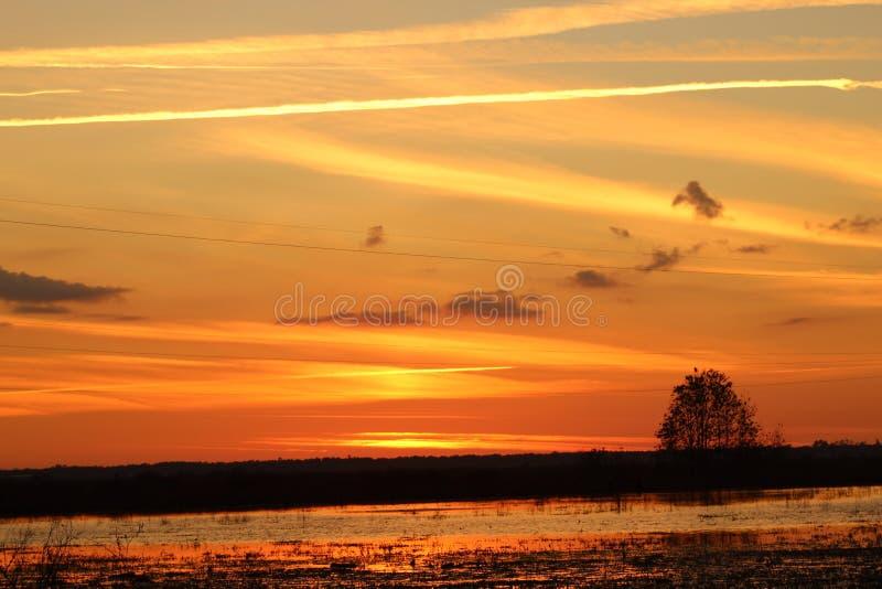 Sonnenuntergang in Florida lizenzfreies stockbild