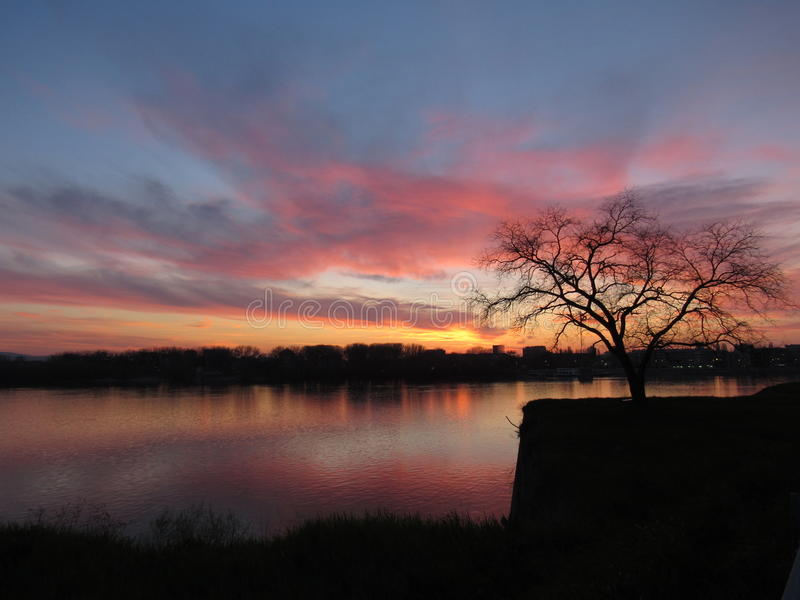 Sonnenuntergang, Fluss und ein Baum stockbild