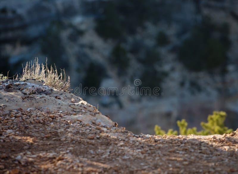 Sonnenuntergang am Grand Canyon lizenzfreies stockbild