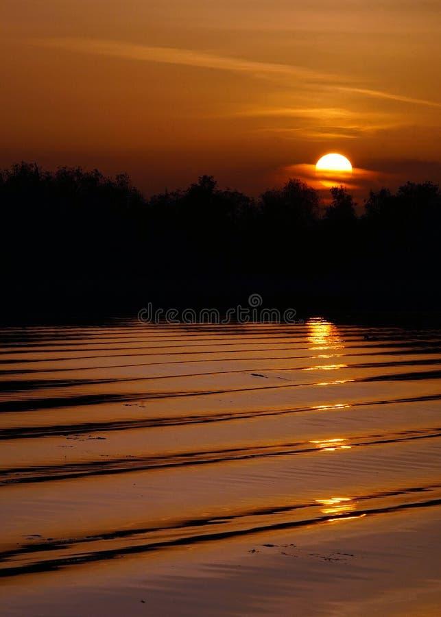 Sonnenuntergang im die Donau-Delta lizenzfreies stockfoto
