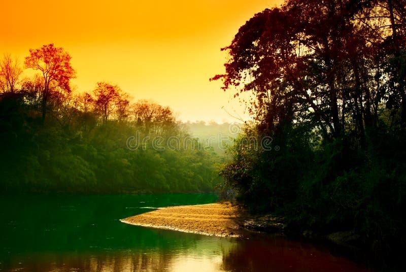 Sonnenuntergang im Dschungel stockbild