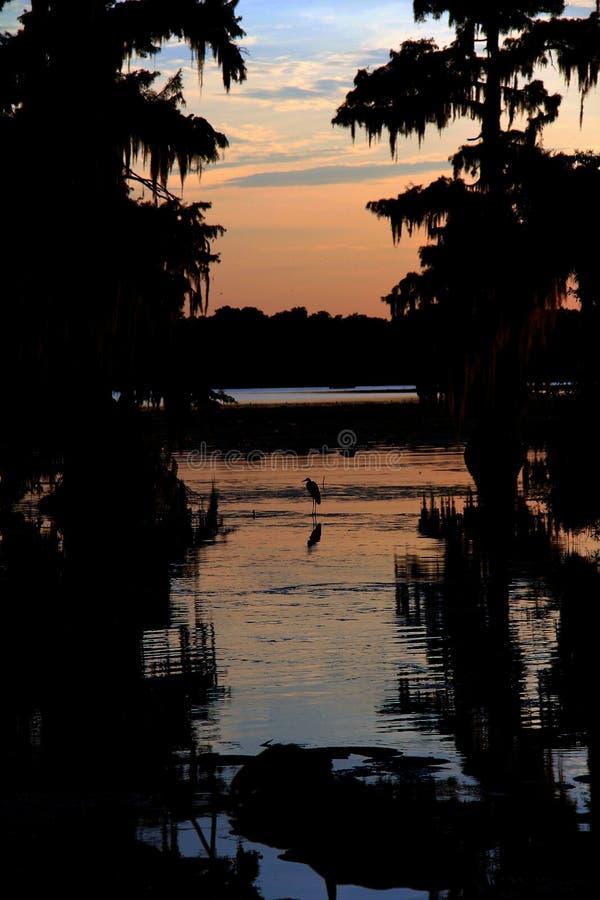 Sonnenuntergang im See Martin Louisiana, mit Schattenbild des Reihers im Hintergrund stockfotografie