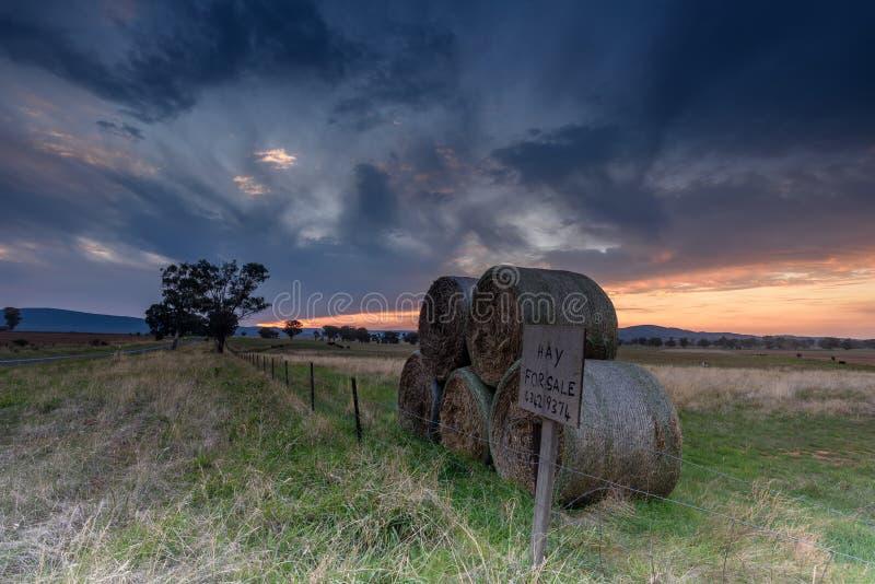 Sonnenuntergang in ländlichem Australien stockbild