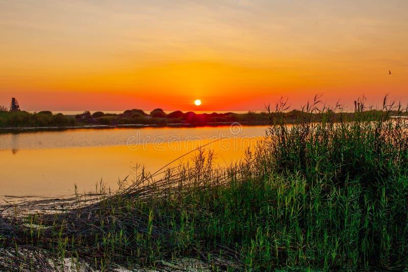 Sonnenuntergang-La Poza TODOS Santos lizenzfreies stockbild