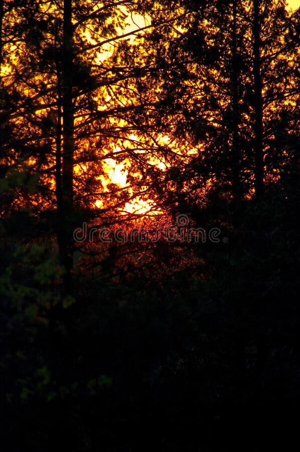 Sonnenuntergang am Lager lizenzfreie stockfotografie