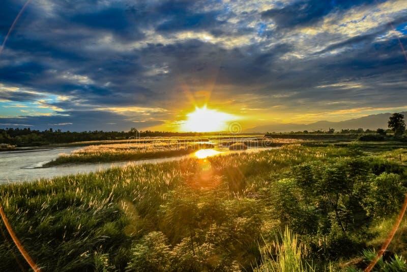 Sonnenuntergang mit Blendenfleck, starkem hohem Gras und Büschen mit einer flachen faulen Flussüberquerung der Horizont stockbild