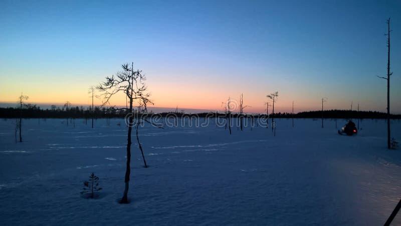Sonnenuntergang mit schlingt hinunter lizenzfreie stockfotografie
