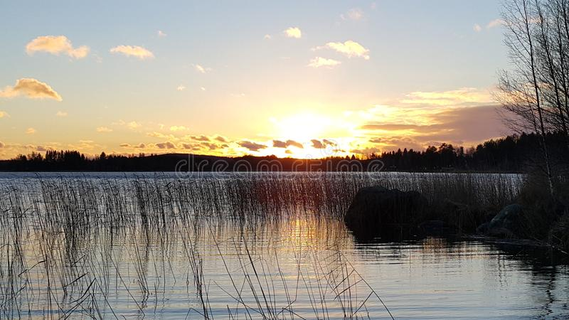 Sonnenuntergang mit Wolken und Anlagen und Bäume stockfoto