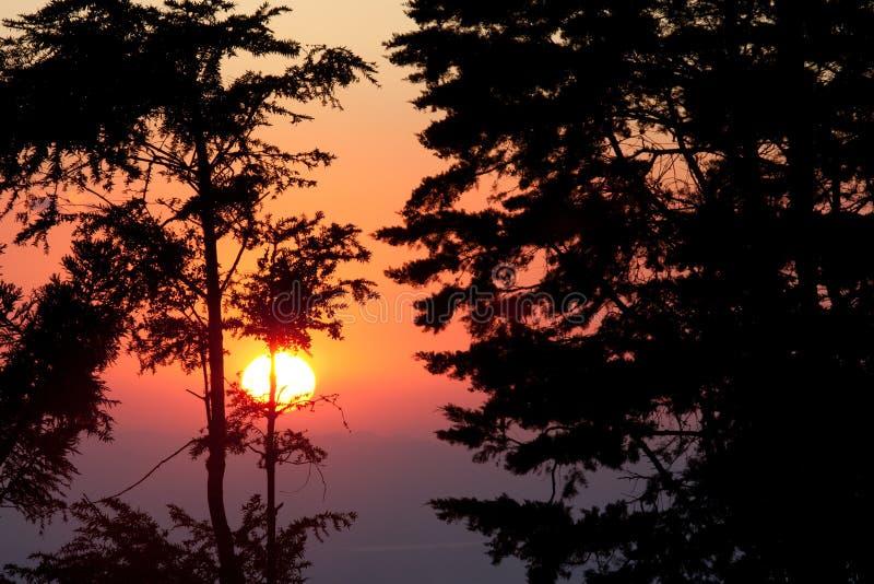 Sonnenuntergang am Monteverde Wolken-Waldvorbehalt stockfoto