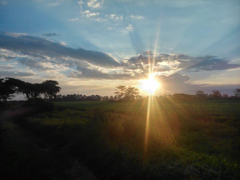 Sonnenuntergang in Nakuru lizenzfreie stockbilder
