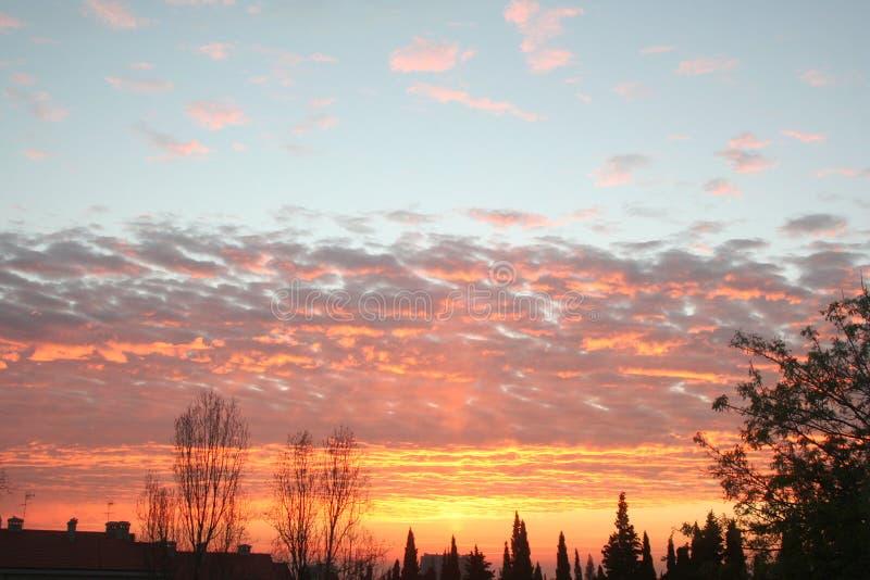 Sonnenuntergang Olivais lizenzfreie stockbilder