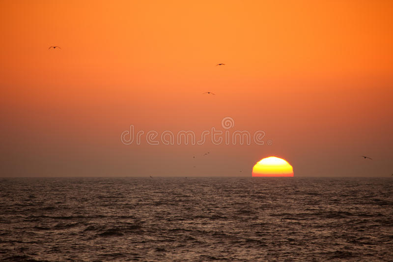 Sonnenuntergang in Palanga lizenzfreie stockbilder