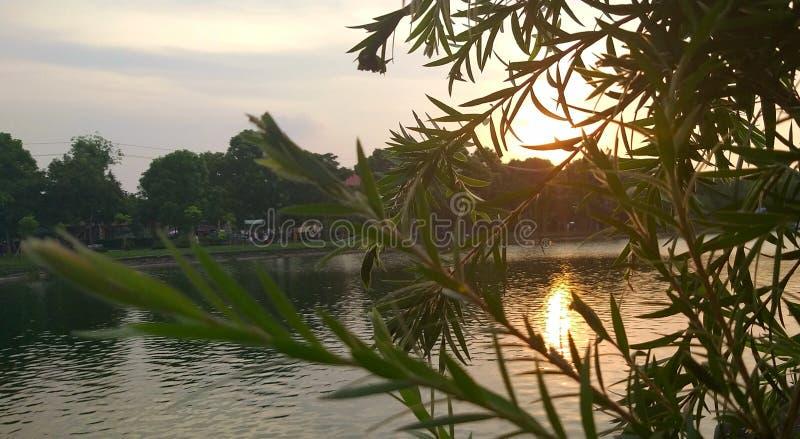 Sonnenuntergang in Richtung zum See am Sommernachmittag lizenzfreie stockfotografie