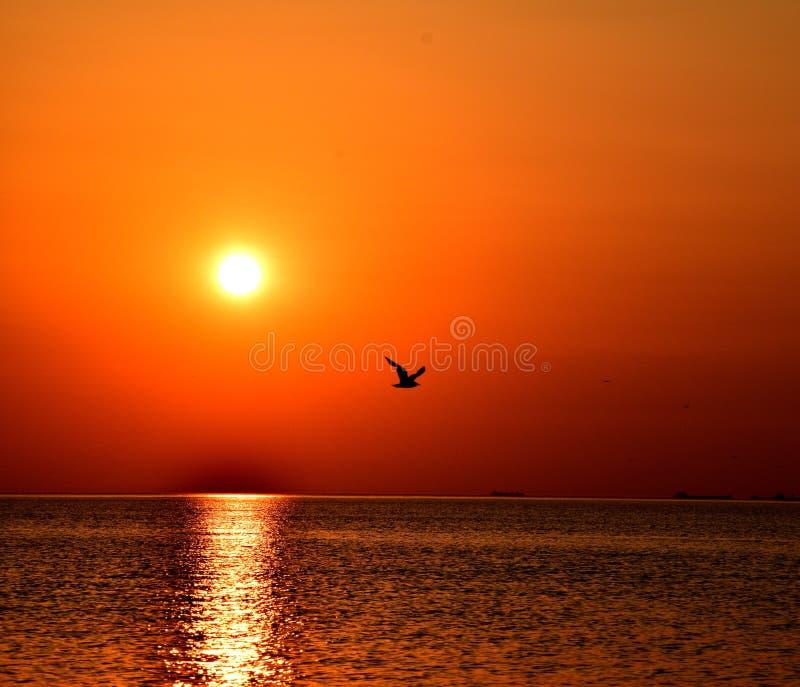 Sonnenuntergang in Riga lizenzfreie stockbilder