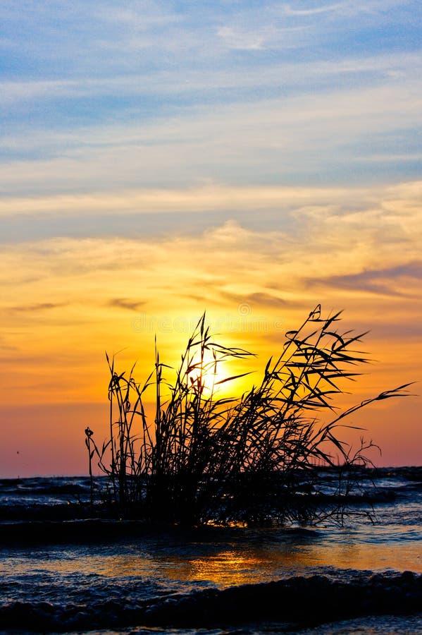 Sonnenuntergang in südlichem See Thailand. lizenzfreie stockfotos