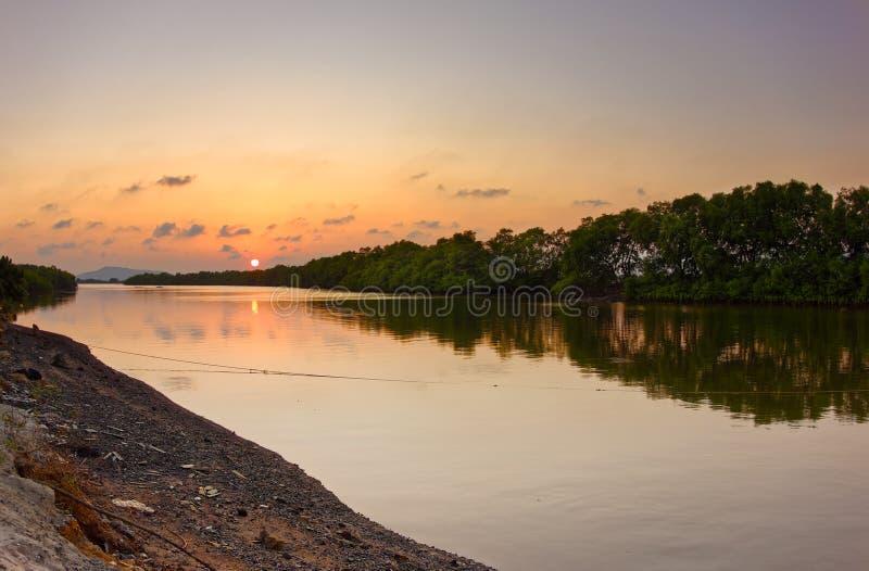 Sonnenuntergang schoss Ansicht des Ba ria Stadtrandwaldes - Vietnam stockfoto
