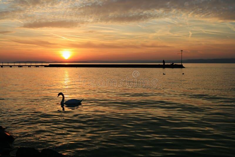Sonnenuntergang in See Balaton stockfotos