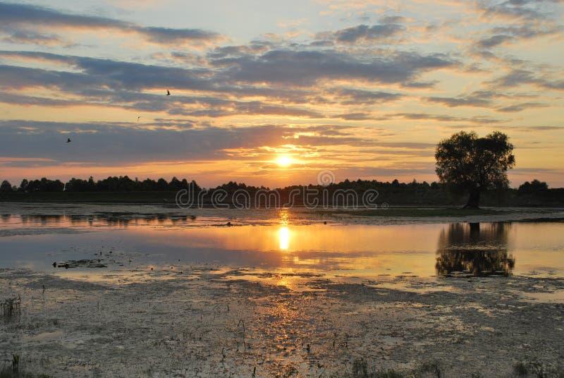 Sonnenuntergang in See E stockfotografie
