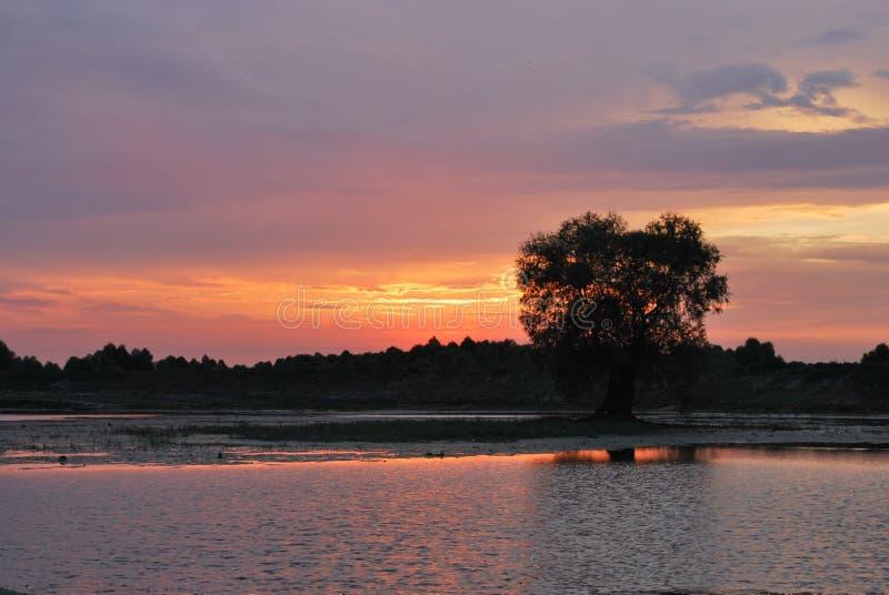 Sonnenuntergang in See E Schöne Sonnenuntergang-Ansicht Junge Erwachsene stockbild