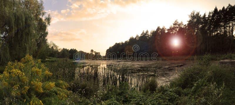 Sonnenuntergang am See umgeben durch Bäume lizenzfreie stockbilder