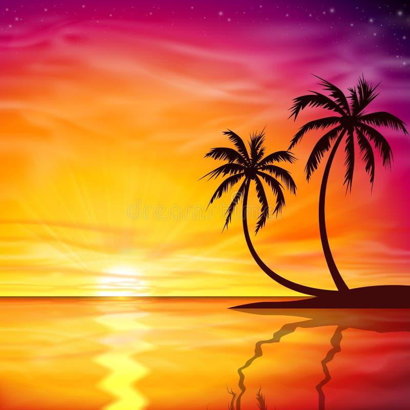 Sonnenuntergang, Sonnenaufgang mit Palmen vektor abbildung