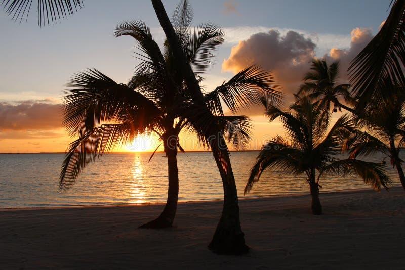 Sonnenuntergang am Strand bei den Bahamas stockbild