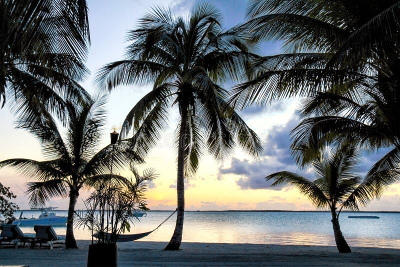 Sonnenuntergang am Strand bei den Bahamas lizenzfreie stockfotos